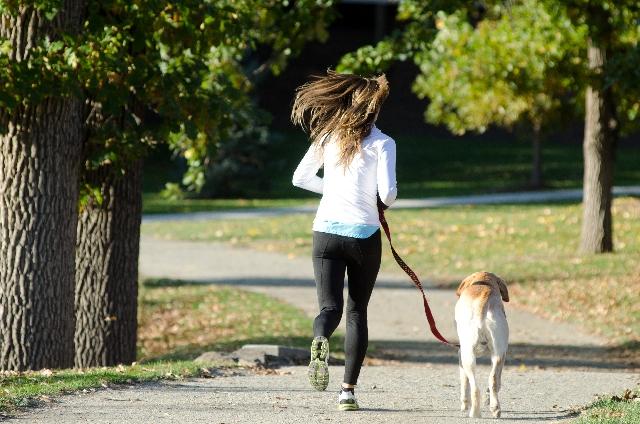 犬の散歩をする女性